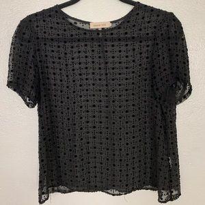 Sheer black top w velvet dot pattern